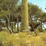 colonna dorica  - anni 70