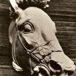 museo - testa di cavallo in terracotta V sec. a.c.